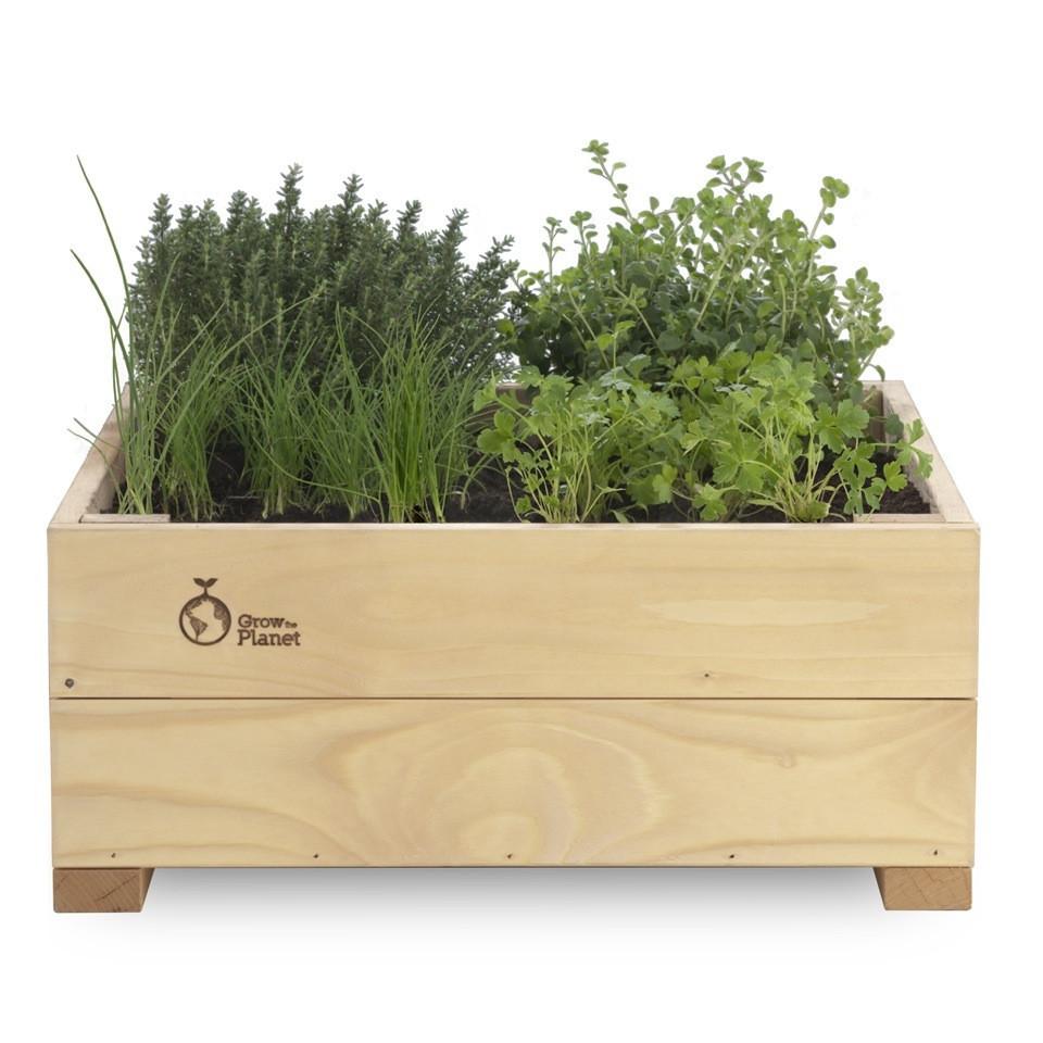 Idee green erbizia il giardino di - Erbe aromatiche in casa ...