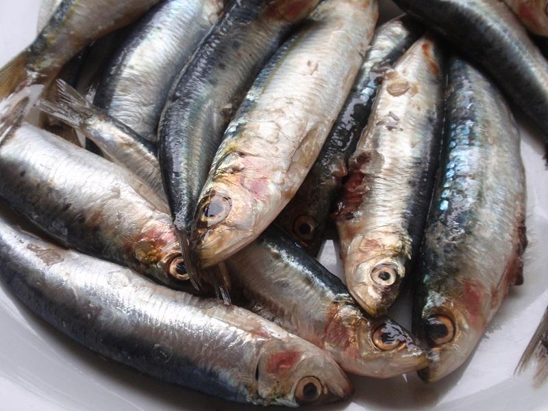 Cene leggere un men di pesce - Cucinare spendendo poco ...