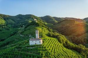Un nuovo Patrimonio Unesco in arrivo per l'Italia  L'orgoglio delle colline di Conegliano