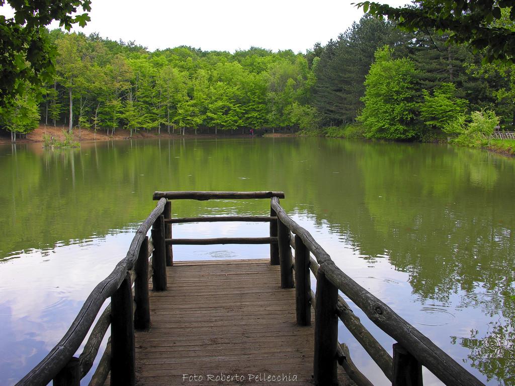 Foresta Umbra, laghetto con pontiletto