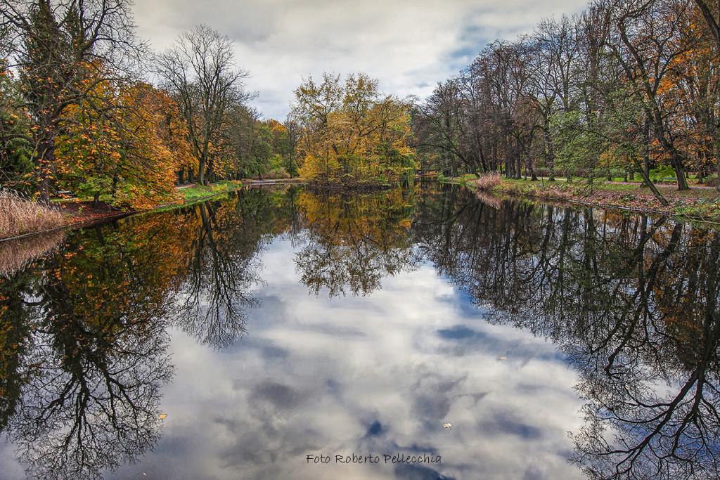 Fb23 Varsavia alberi che si specchiano nel parco Łazienki