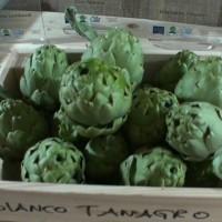 BIANCO TANAGRO 2018. Il video story del primo maggio